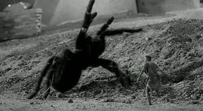 Incredible Shrinking Man 1957 Jack Arnold
