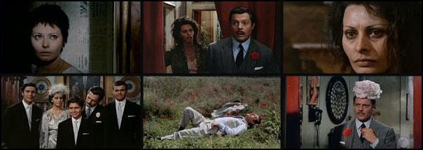 Matrimonio all'italiana 1964 Vittorio De Sica Sophia Loren Marcello Mastroianni